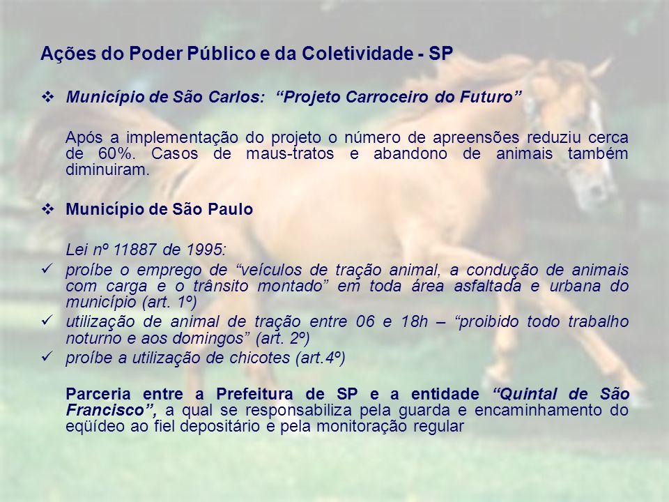 Ações do Poder Público e da Coletividade - SP