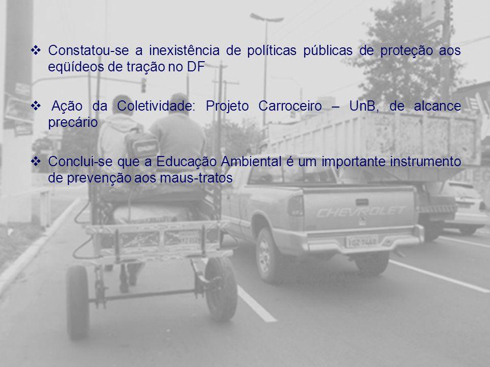 Constatou-se a inexistência de políticas públicas de proteção aos eqüídeos de tração no DF