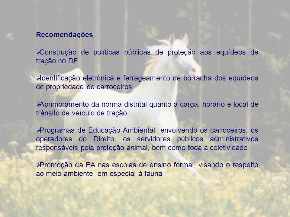 Recomendações Construção de políticas públicas de proteção aos eqüídeos de tração no DF.