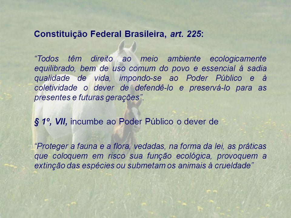 Constituição Federal Brasileira, art. 225: