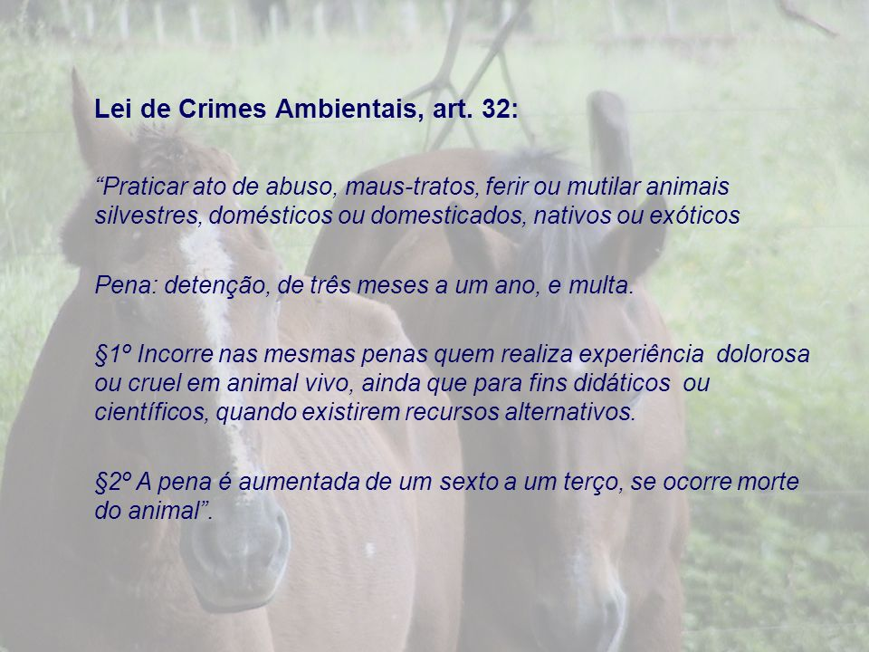 Lei de Crimes Ambientais, art. 32: