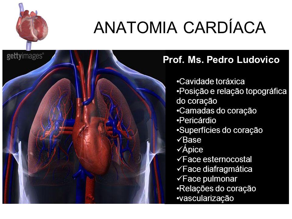 ANATOMIA CARDÍACA Prof. Ms. Pedro Ludovico Cavidade toráxica
