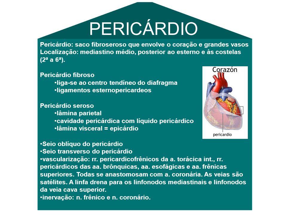 PERICÁRDIO Pericárdio: saco fibroseroso que envolve o coração e grandes vasos.