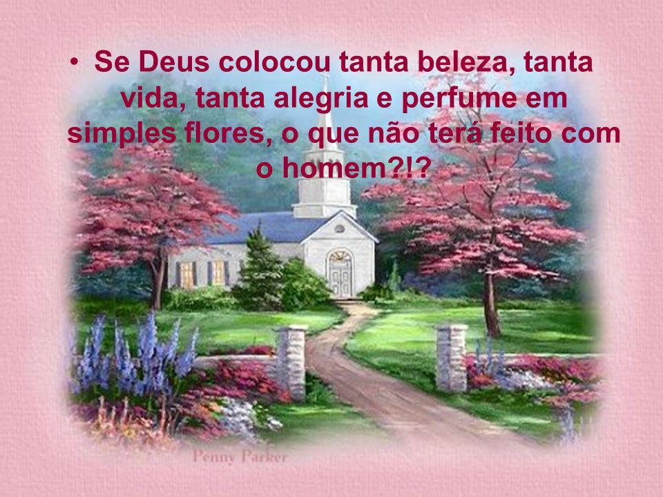 Se Deus colocou tanta beleza, tanta vida, tanta alegria e perfume em simples flores, o que não terá feito com o homem !