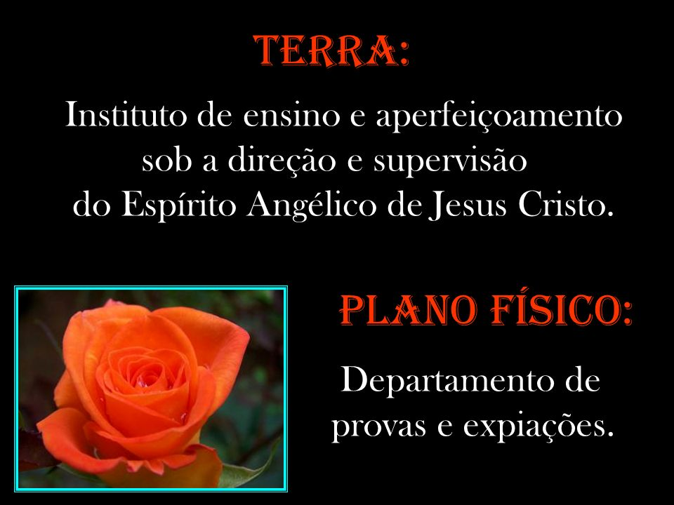 TERRA: Instituto de ensino e aperfeiçoamento sob a direção e supervisão. do Espírito Angélico de Jesus Cristo.