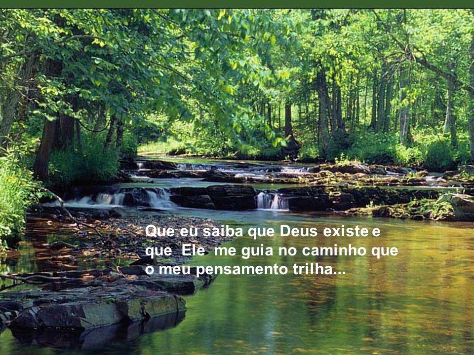 Que eu saiba que Deus existe e que Ele me guia no caminho que o meu pensamento trilha...