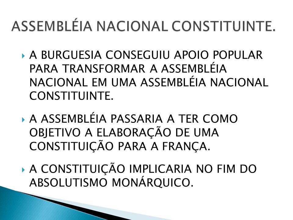 ASSEMBLÉIA NACIONAL CONSTITUINTE.