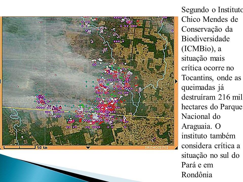 Segundo o Instituto Chico Mendes de Conservação da Biodiversidade (ICMBio), a situação mais crítica ocorre no Tocantins, onde as queimadas já destruíram 216 mil hectares do Parque Nacional do Araguaia.