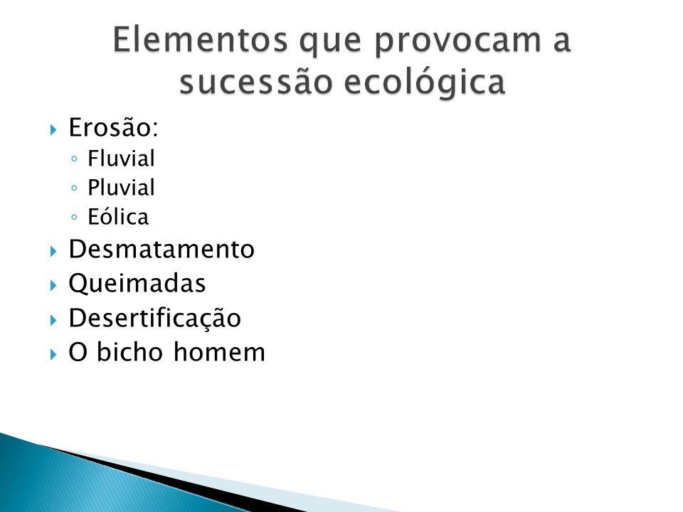 Elementos que provocam a sucessão ecológica