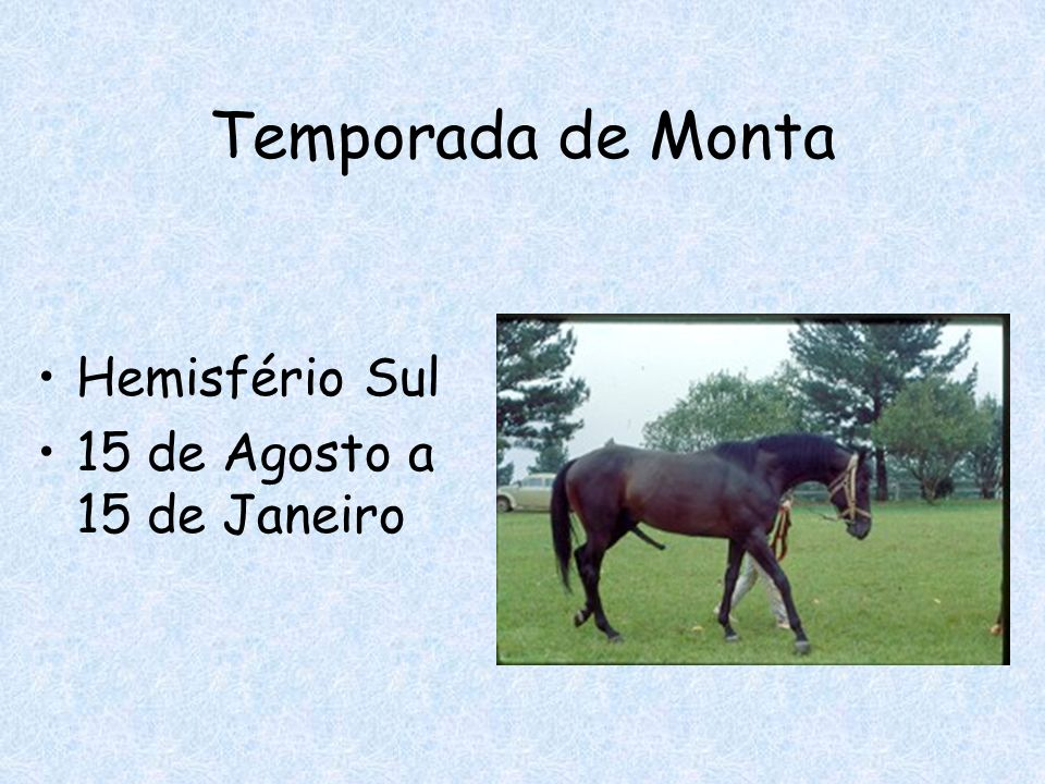 Temporada de Monta Hemisfério Sul 15 de Agosto a 15 de Janeiro