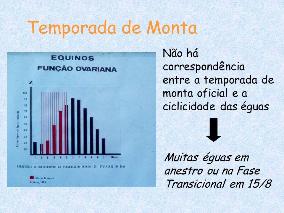 Temporada de Monta Não há correspondência entre a temporada de monta oficial e a ciclicidade das éguas.