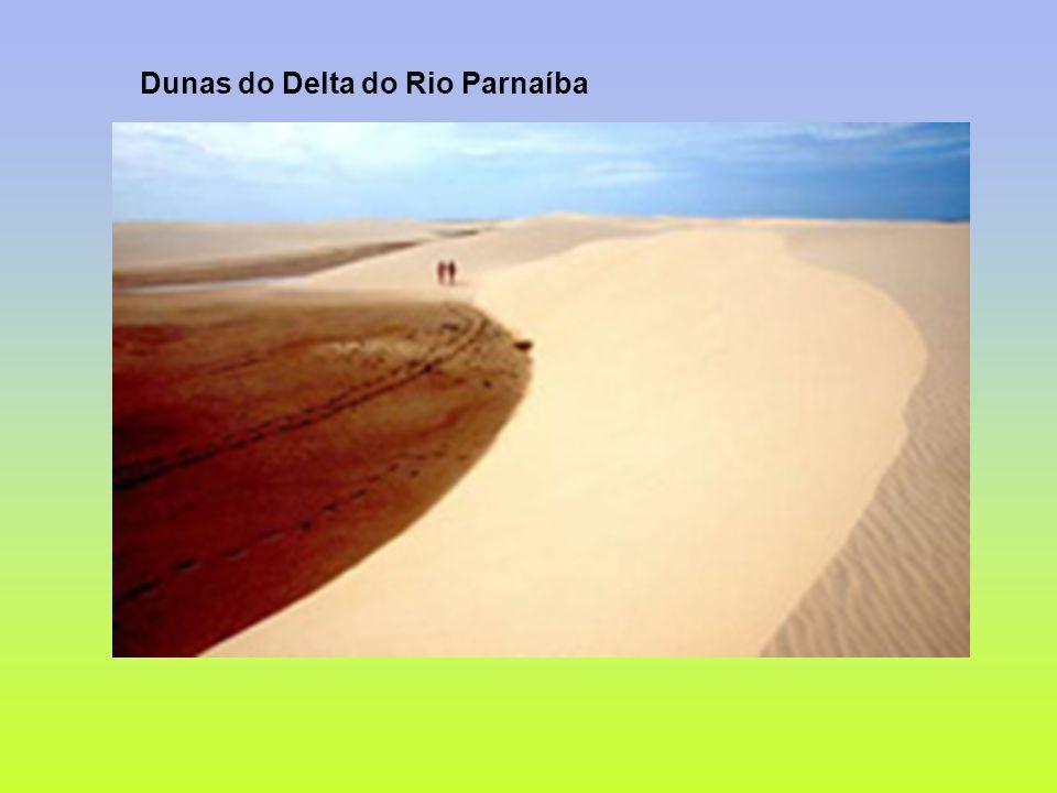 Dunas do Delta do Rio Parnaíba