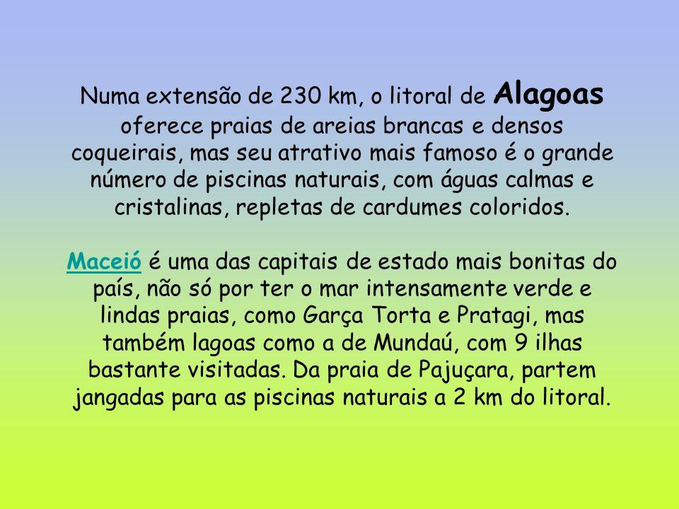 Numa extensão de 230 km, o litoral de Alagoas oferece praias de areias brancas e densos coqueirais, mas seu atrativo mais famoso é o grande número de piscinas naturais, com águas calmas e cristalinas, repletas de cardumes coloridos.