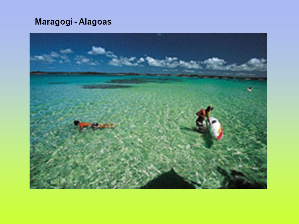 Maragogi - Alagoas