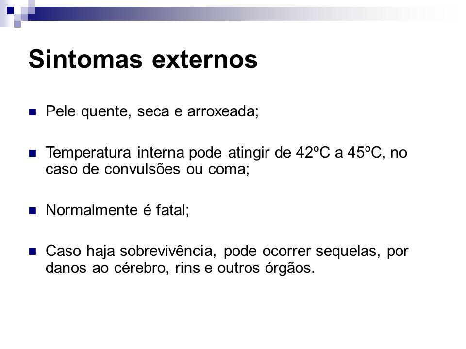 Sintomas externos Pele quente, seca e arroxeada;