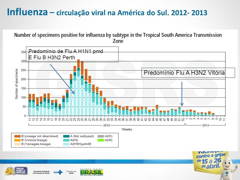 Influenza – circulação viral na América do Sul. 2012- 2013