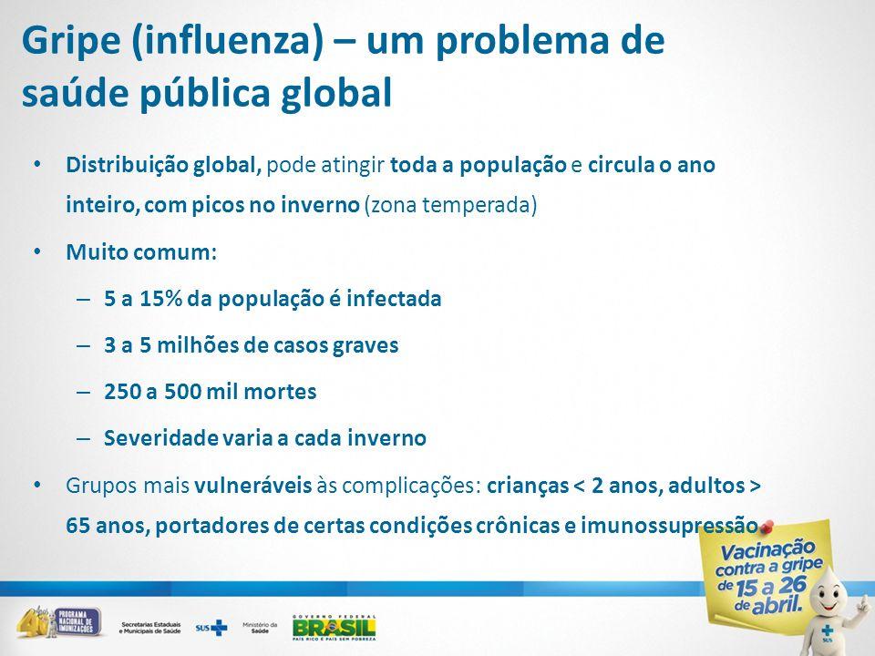 Gripe (influenza) – um problema de saúde pública global