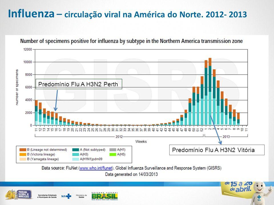 Influenza – circulação viral na América do Norte. 2012- 2013