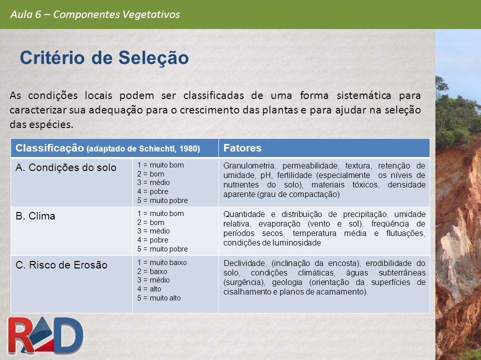 Critério de Seleção Aula 6 – Componentes Vegetativos