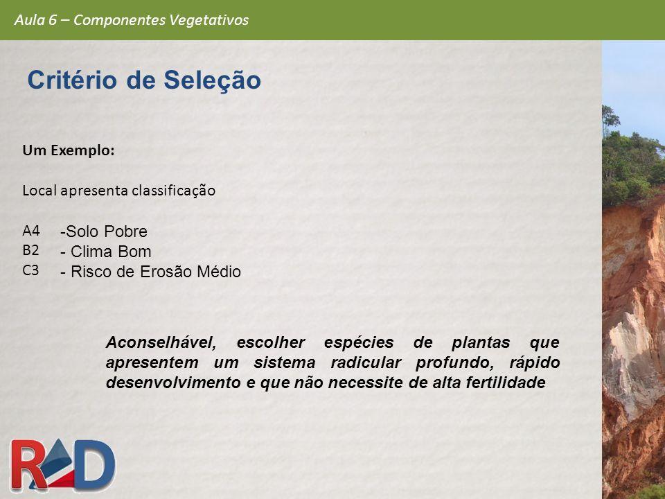 Critério de Seleção Aula 6 – Componentes Vegetativos Um Exemplo: