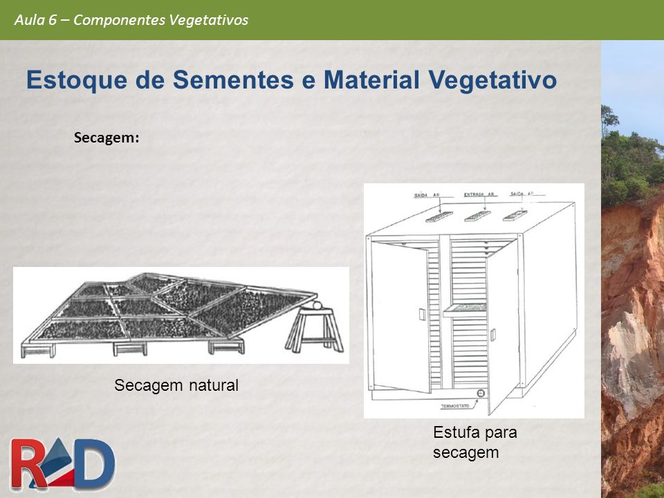 Estoque de Sementes e Material Vegetativo