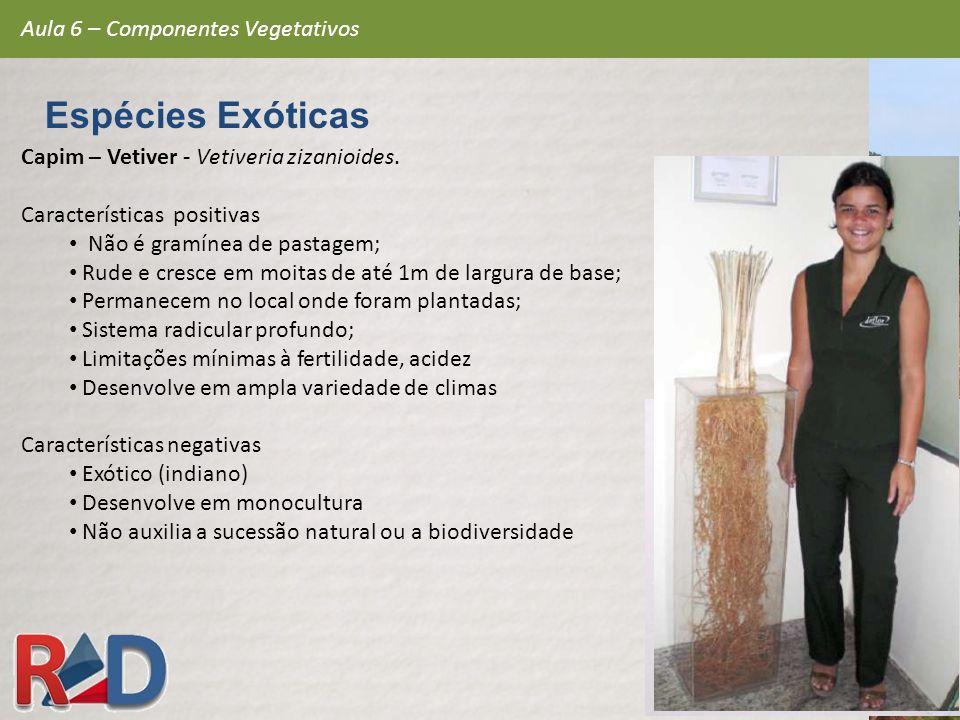 Espécies Exóticas Aula 6 – Componentes Vegetativos