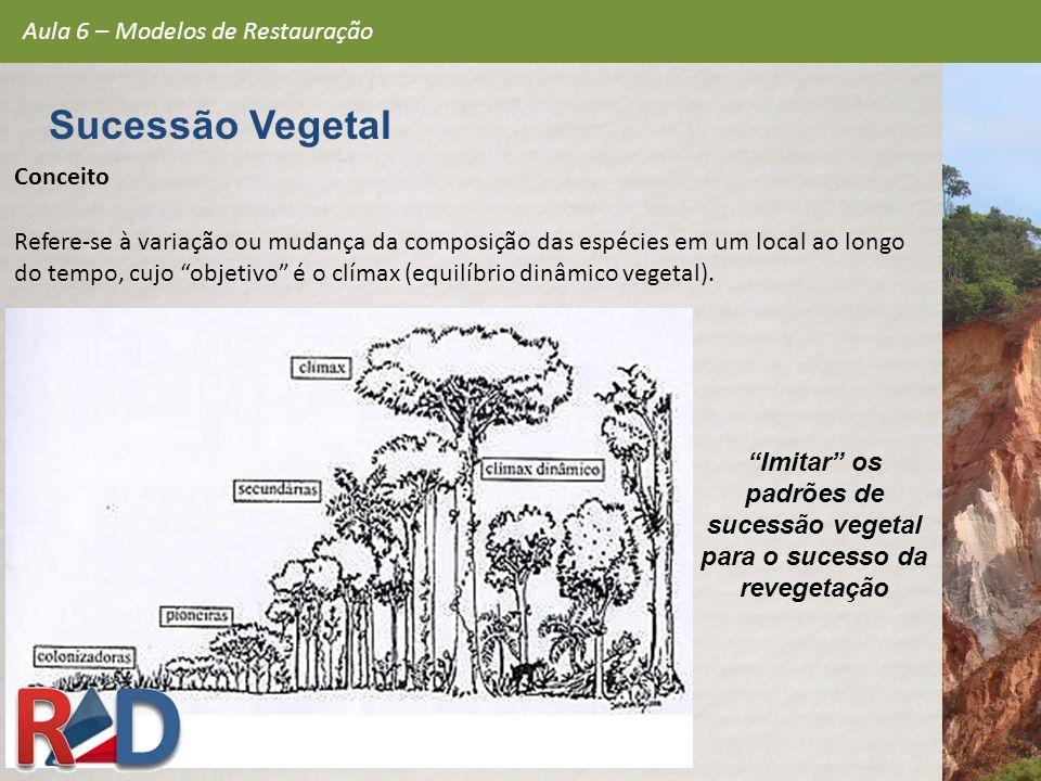 Imitar os padrões de sucessão vegetal para o sucesso da revegetação