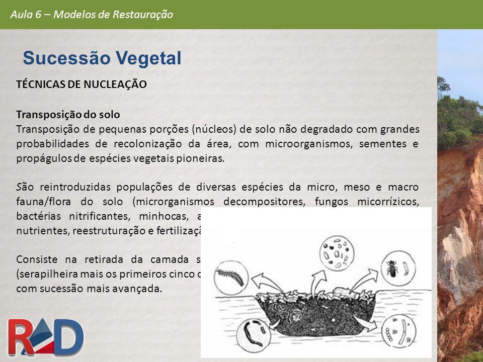 Sucessão Vegetal Aula 6 – Modelos de Restauração TÉCNICAS DE NUCLEAÇÃO