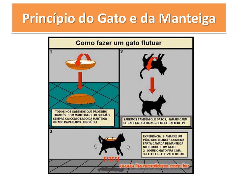 Princípio do Gato e da Manteiga