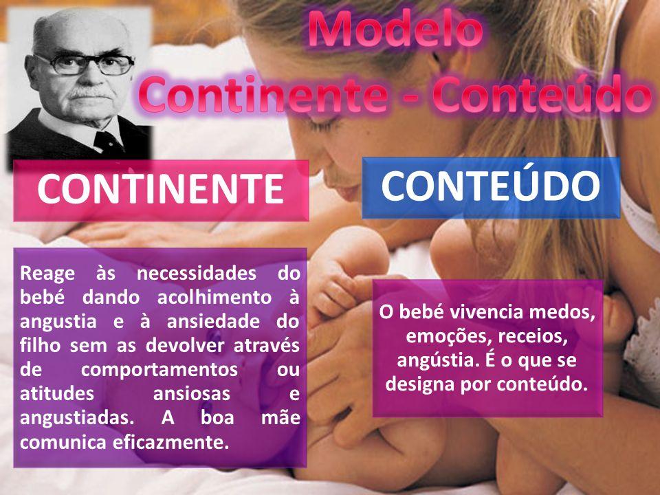 Modelo Continente - Conteúdo