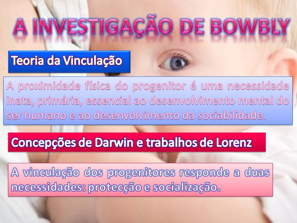 A INVESTIGAÇÃO DE BOWBLY