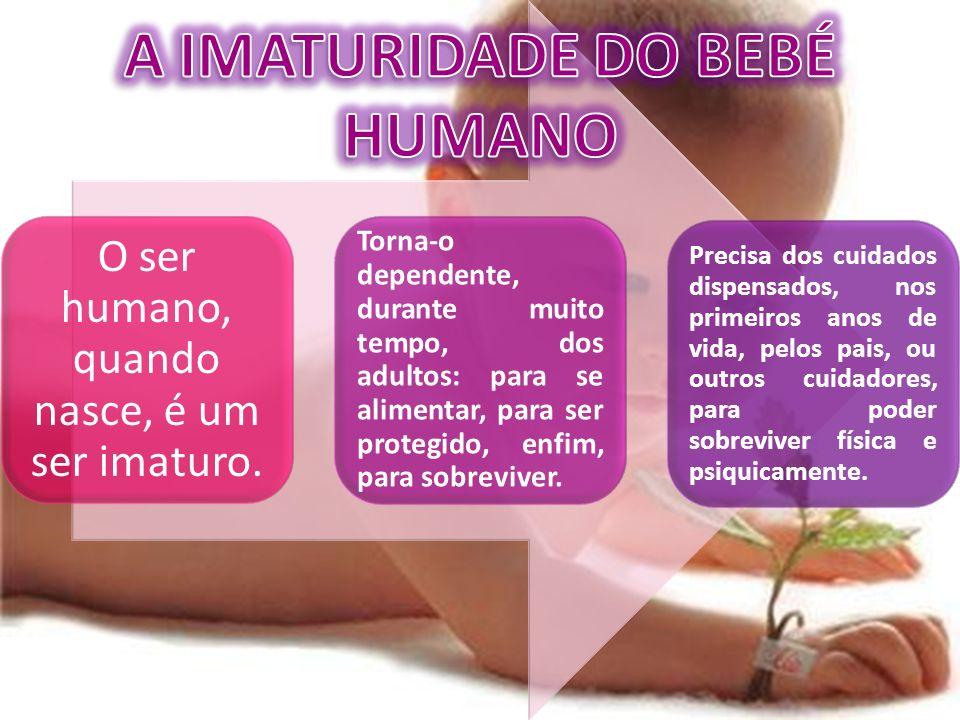 A IMATURIDADE DO BEBÉ HUMANO