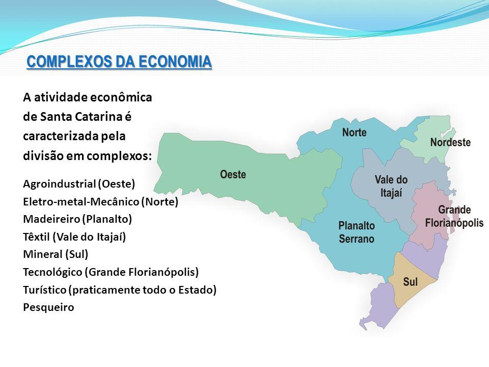 COMPLEXOS DA ECONOMIA A atividade econômica de Santa Catarina é