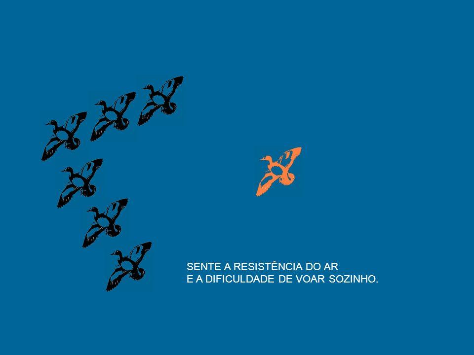 SENTE A RESISTÊNCIA DO AR
