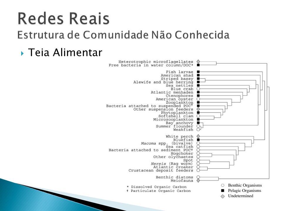 Redes Reais Estrutura de Comunidade Não Conhecida