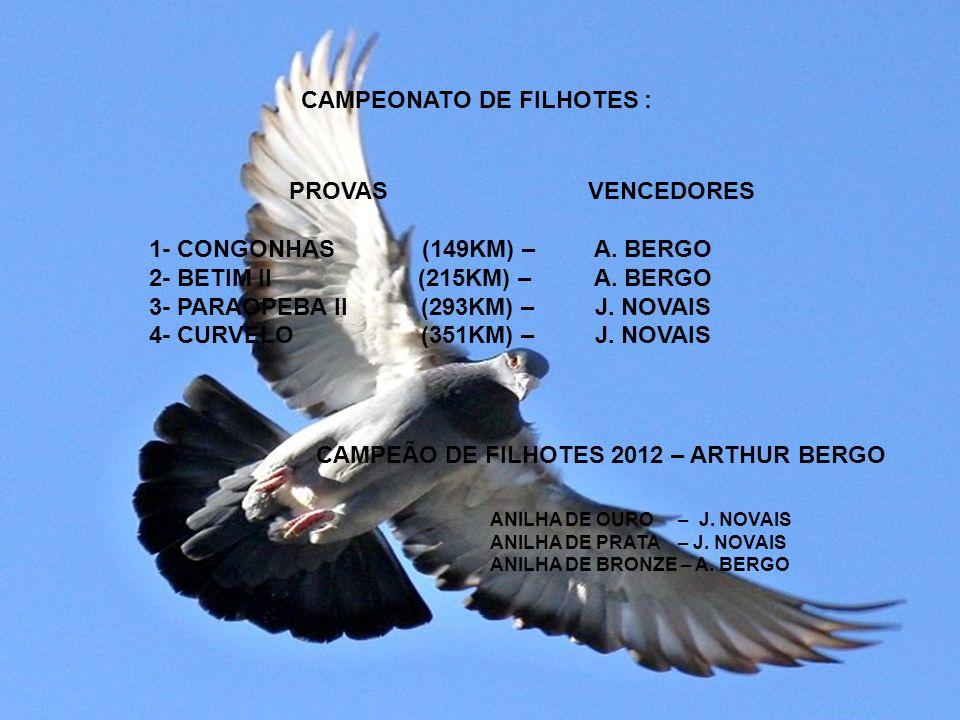 CAMPEONATO DE FILHOTES :