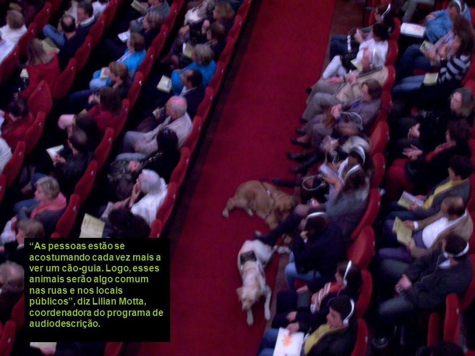 As pessoas estão se acostumando cada vez mais a ver um cão-guia
