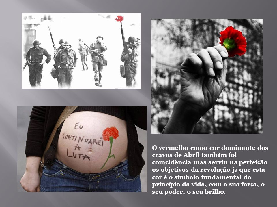 O vermelho como cor dominante dos cravos de Abril também foi coincidência mas serviu na perfeição os objetivos da revolução já que esta cor é o símbolo fundamental do princípio da vida, com a sua força, o seu poder, o seu brilho.