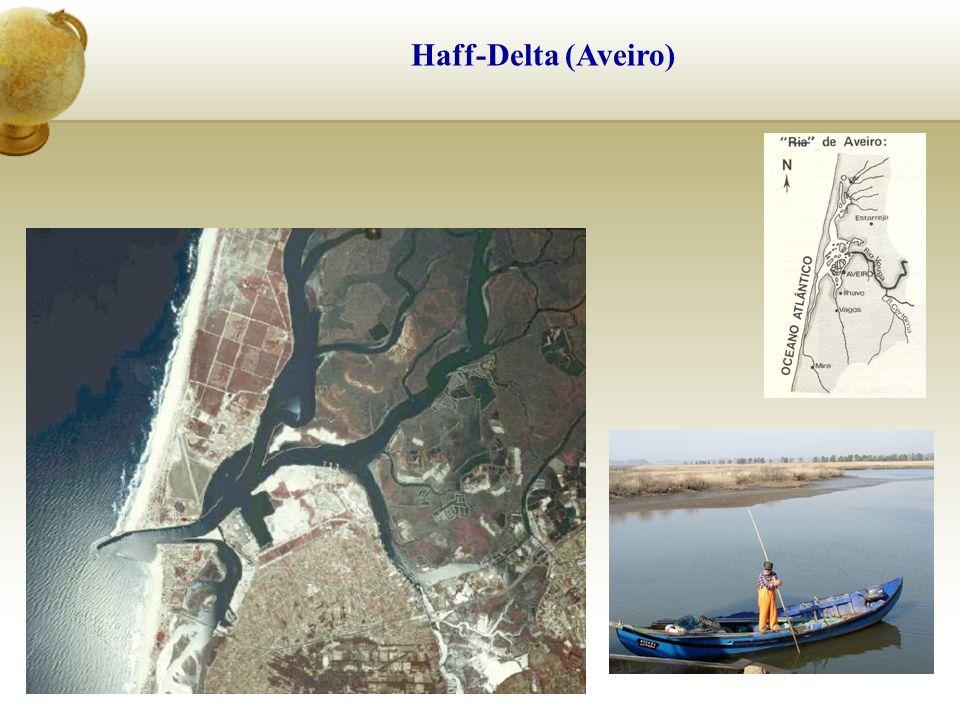 Haff-Delta (Aveiro)