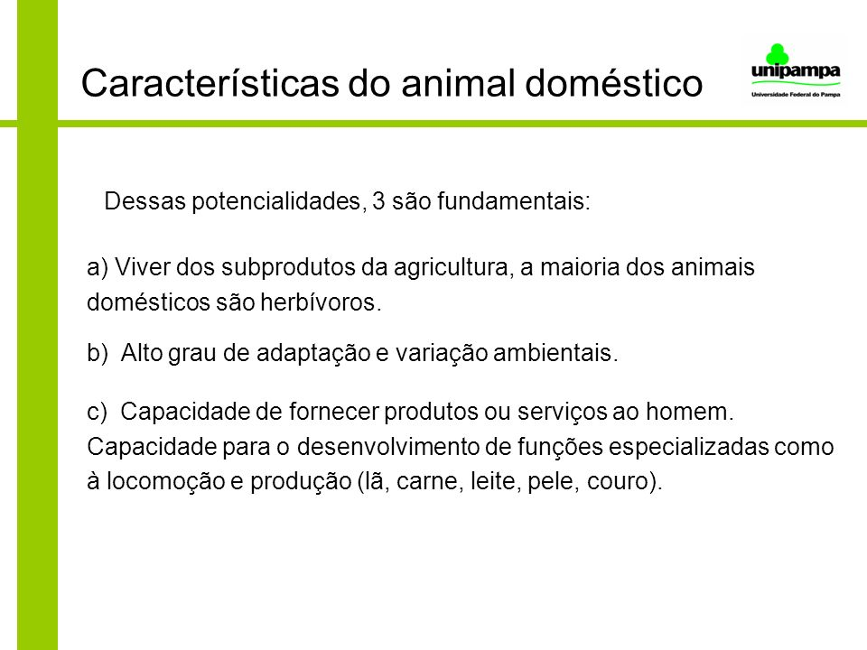 Características do animal doméstico