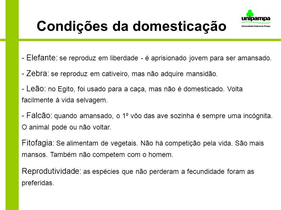 Condições da domesticação