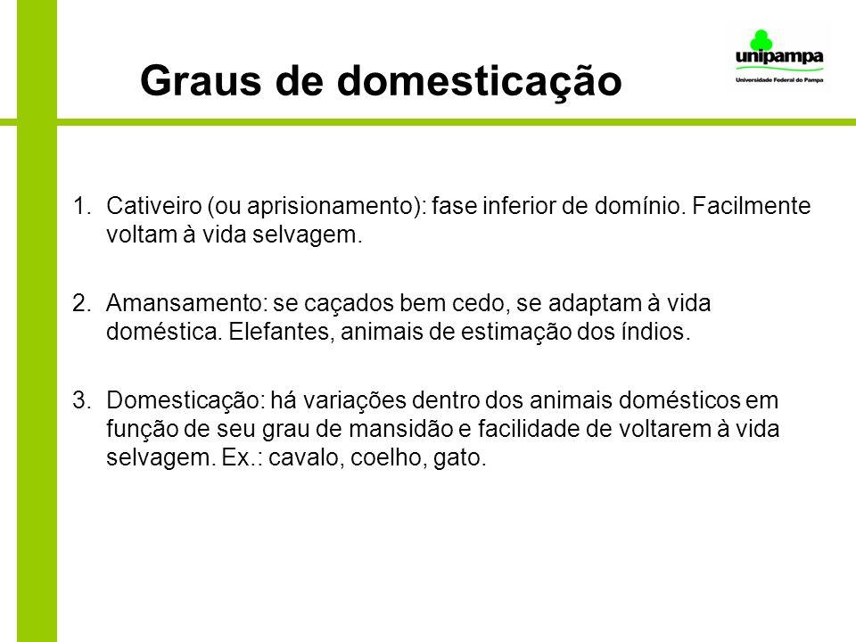 Graus de domesticação Cativeiro (ou aprisionamento): fase inferior de domínio. Facilmente voltam à vida selvagem.