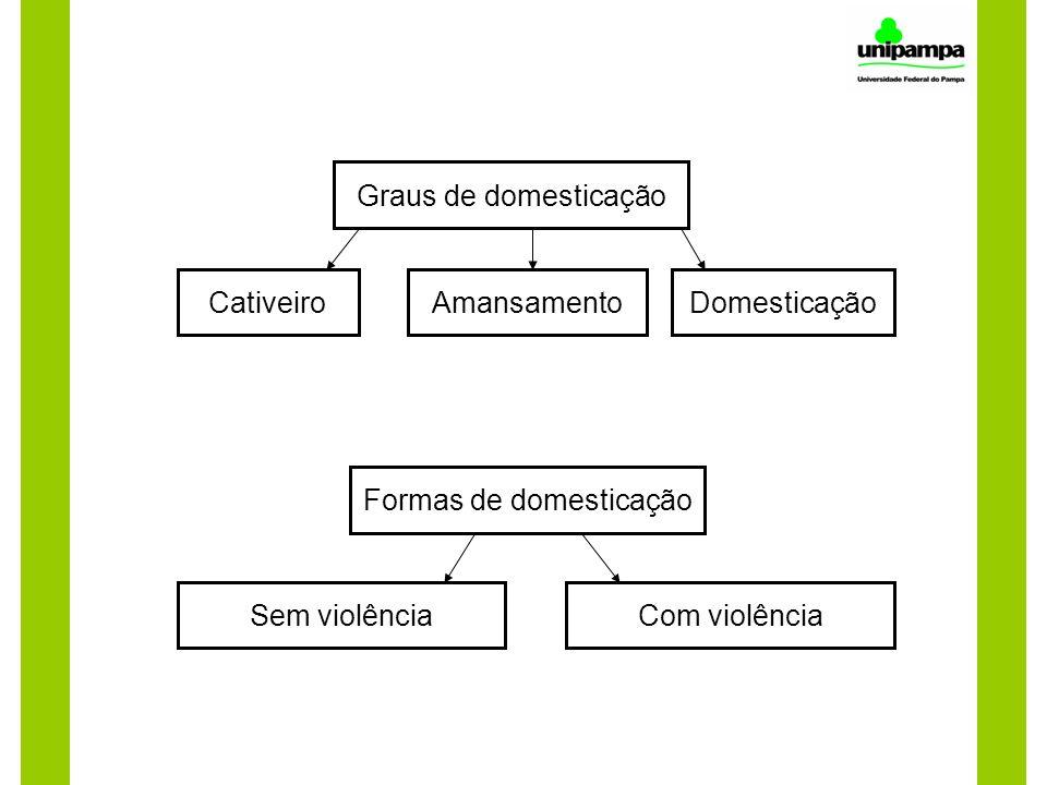 Formas de domesticação