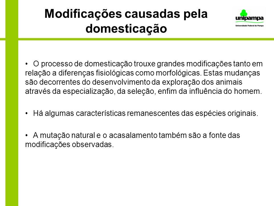 Modificações causadas pela domesticação