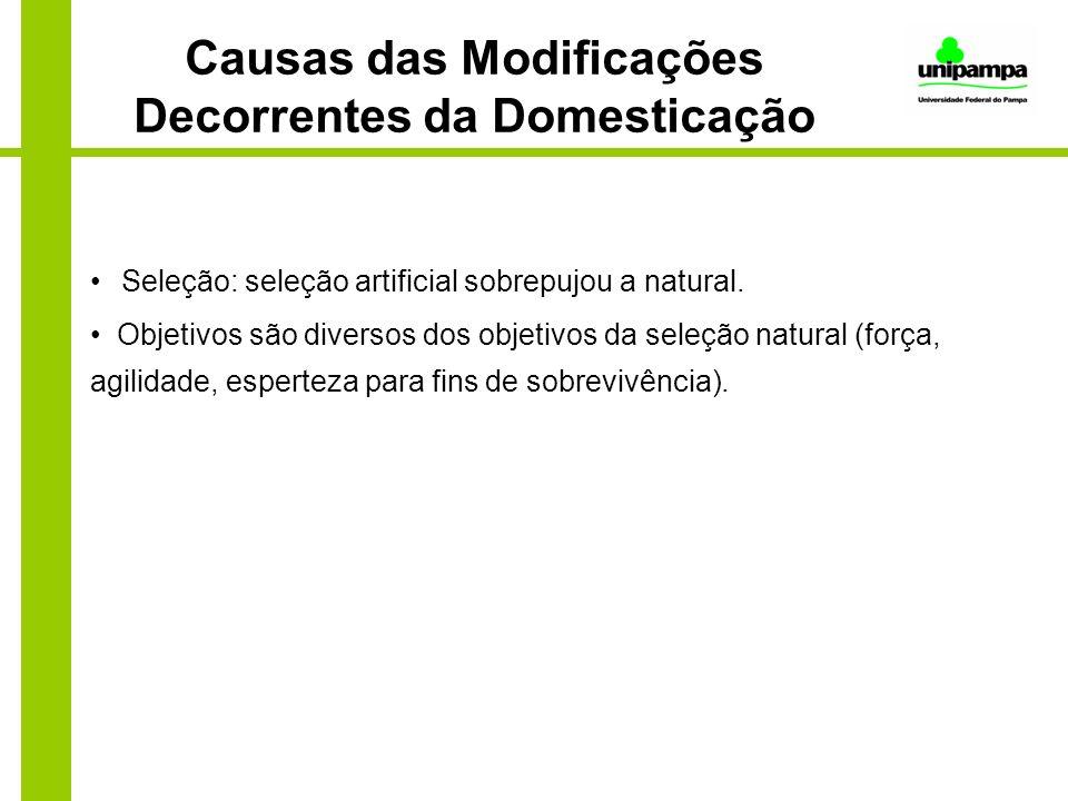 Causas das Modificações Decorrentes da Domesticação