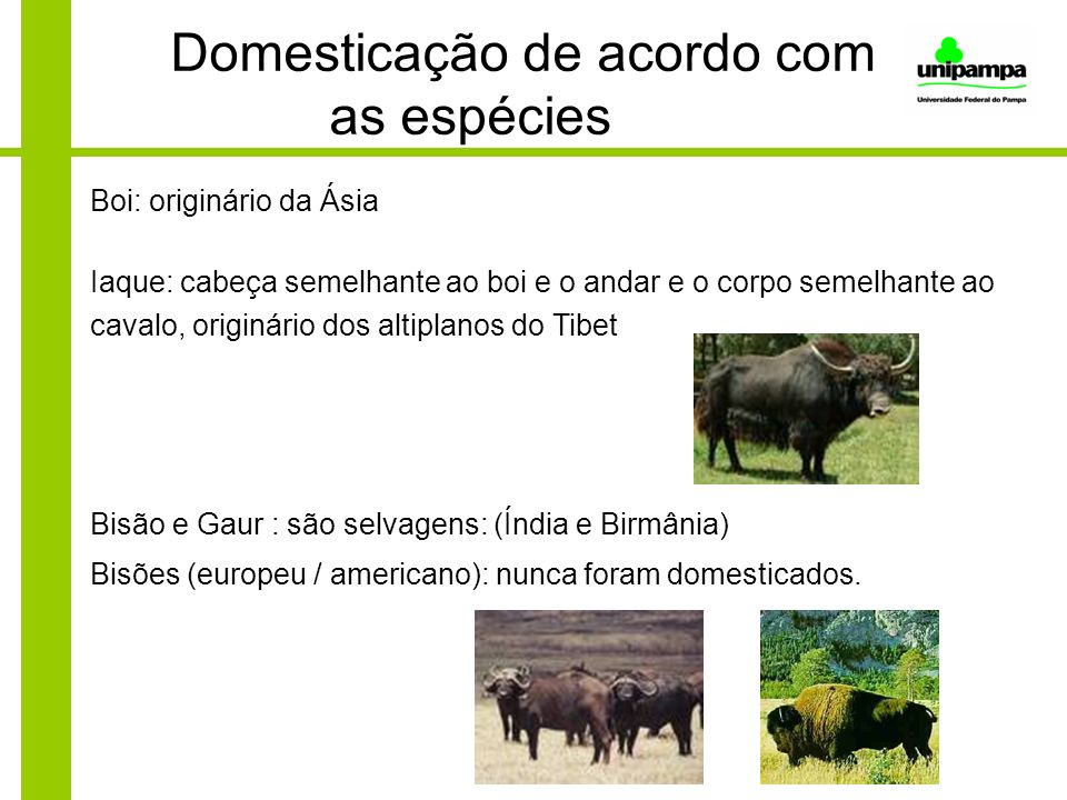 Domesticação de acordo com as espécies