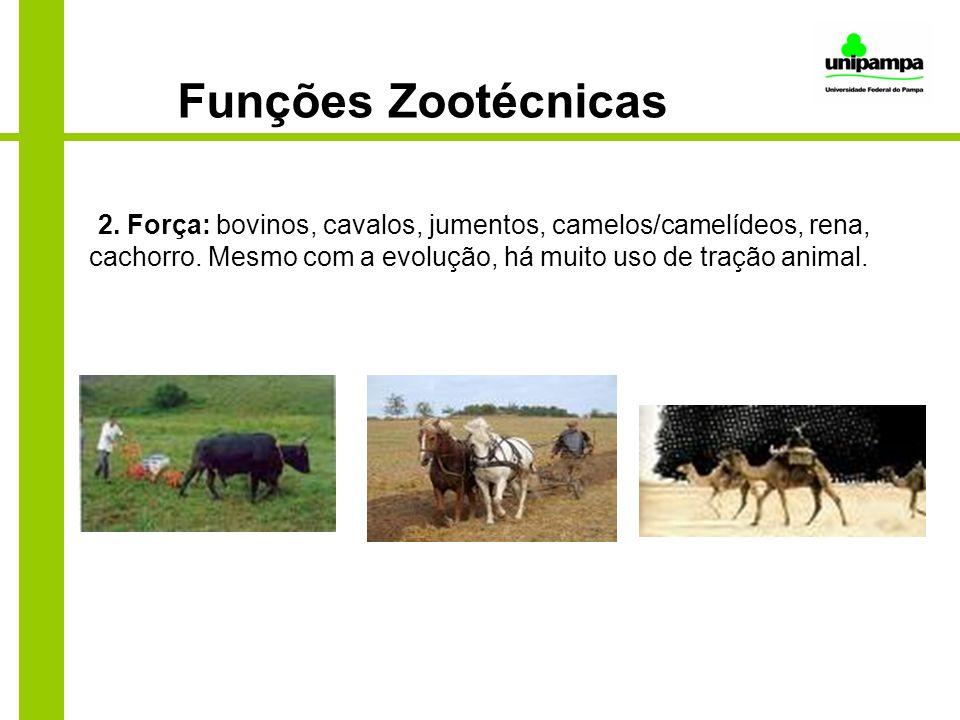 Funções Zootécnicas 2. Força: bovinos, cavalos, jumentos, camelos/camelídeos, rena, cachorro.