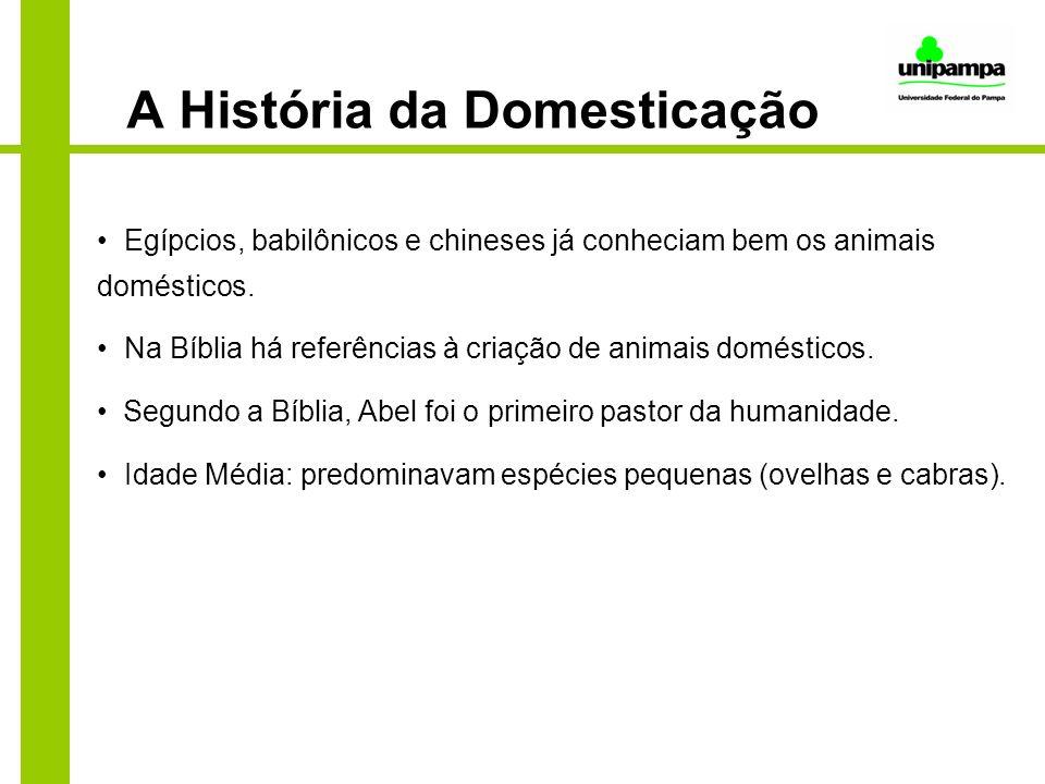 A História da Domesticação