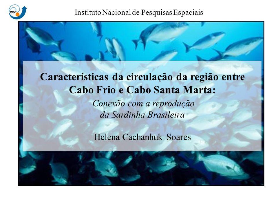Helena Cachanhuk Soares