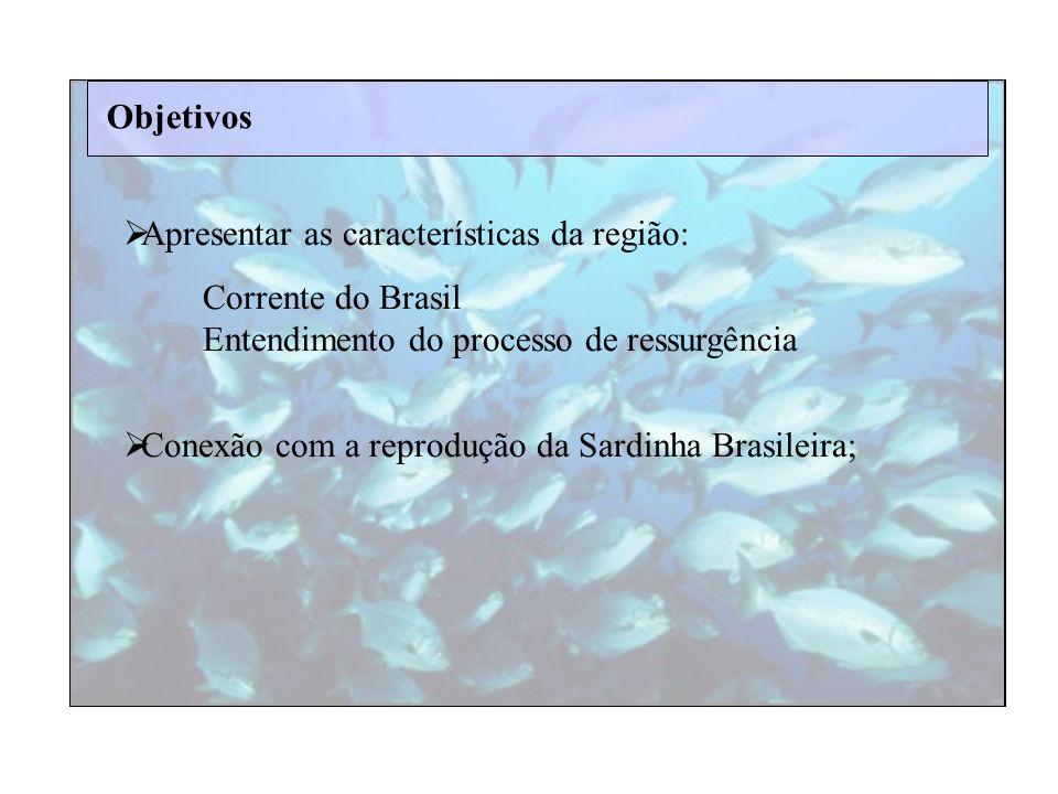 Objetivos Apresentar as características da região: Corrente do Brasil. Entendimento do processo de ressurgência.
